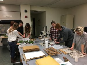 College students putting plants in herbarium presses.