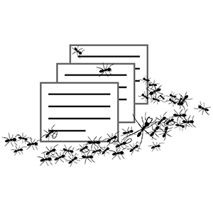 Linked to Army Ant Guest Field Cards Database