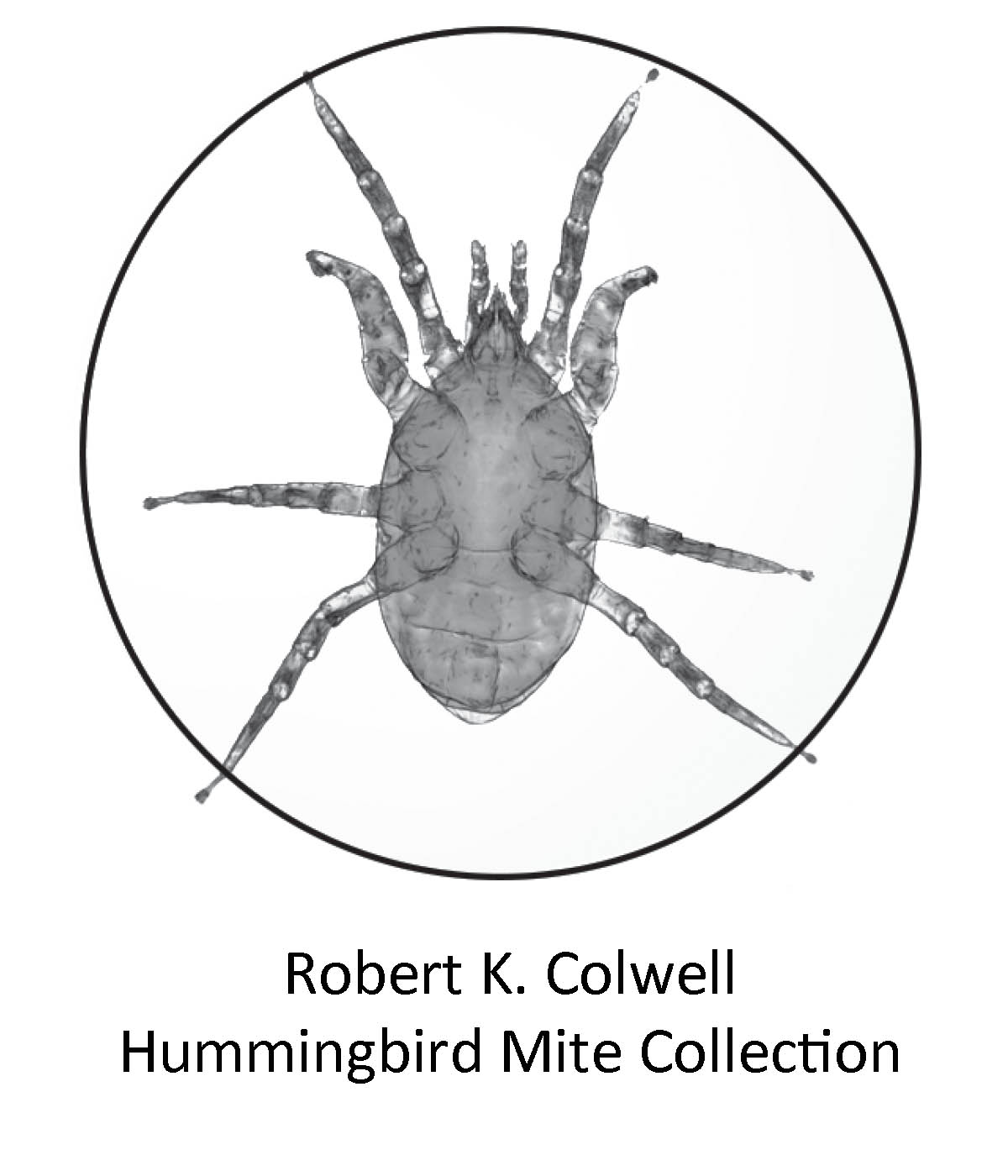 Plaque for R.Colwell collection