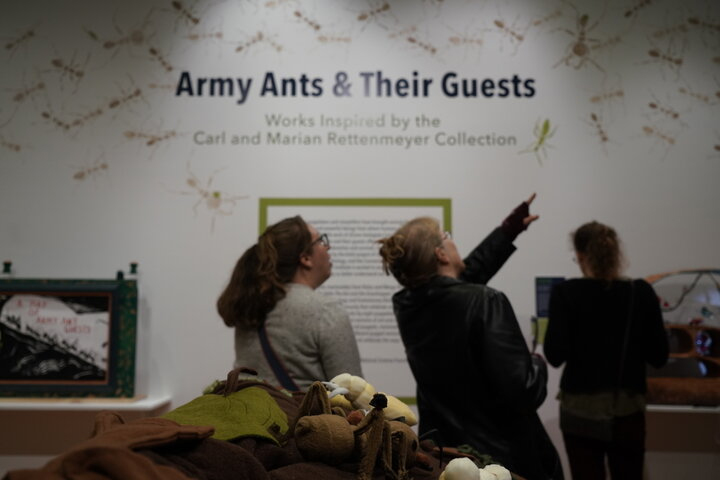 "Students and members of the public attend the grand opening of the exhibit ""Army Ants and Their Guests"" showcased collaborative puppet work between UConn's Ecology and Evolutionary Biology and Puppetry Departments."