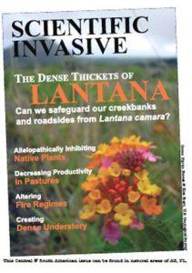 "imaginary magazine cover for ""Scientific Invasive"" featuring a cover image of Lantana camara."