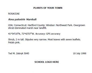 Example herbarium label showing heading, plant family and scientific name, locality information, GPS coordinates, description of plant, name of collector, date of collection, and school logo.